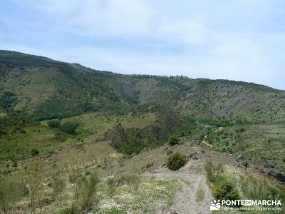 Carcavas de Alpedrete de la Sierra y Meandros del Lozoya;fines de semana;rutas por la sierra de madr